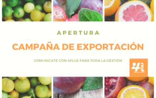 caAPERTURA CAMPAÑA DE EXPORTACIONmpaña de exportacion